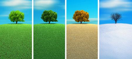 quatre saisons: Un arbre dans quatre saisons rendu 3d  Banque d'images