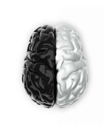 Brain in black and white like Ying and Yang - 3d render photo