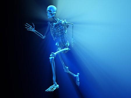 scheletro umano: Scheletro umano in esecuzione - 3d rendering illustrazione  Archivio Fotografico