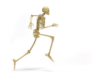 sports medicine: Human skeleton running  - 3d render illustration Stock Photo