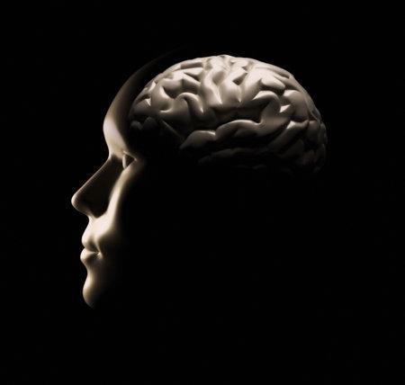kopf: Menschliche Gehirn - dies ist ein 3D-Render Illustration