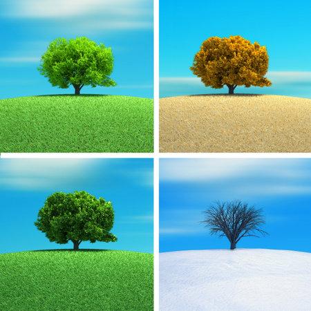 seasons: Een boom in vier seizoen - 3d render