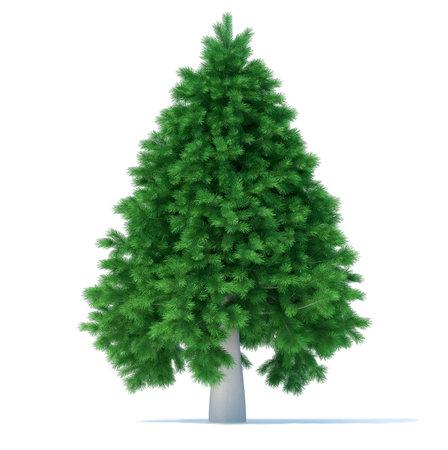 Undecorated christmas tree over white - 3d render illustration  illustration
