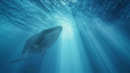 Whale deep in the ocean. This is a 3d render illustration