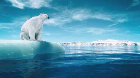 Polar bear on a piece of glacier. This is a 3d render illustration Stock Photo