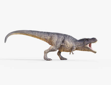 3d geef dinosaurus terug - trex wit. Dit is een 3d render illustratie