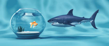 Golden Fish in a bowl and a big shark.This is a 3d render illustration Stock Photo