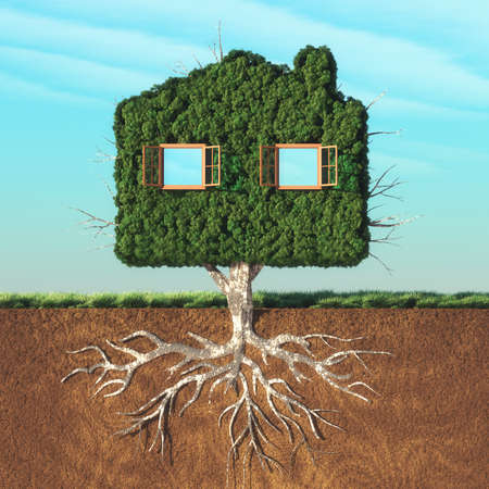 House shaped green tree with roots underground. This is a 3d render illustration