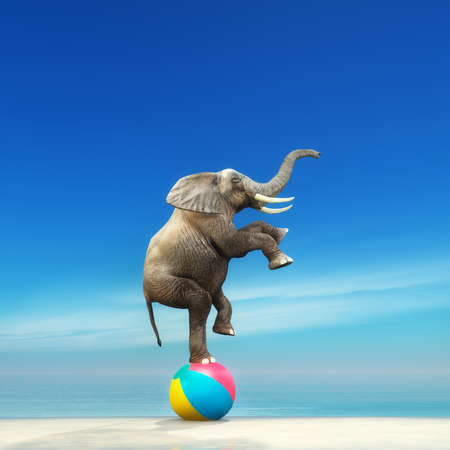 An elephant on a beach ball on the seashore. This is a 3d render illustration Archivio Fotografico