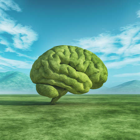 緑の野原に人間の脳の形をした大きな木のイメージ。これは、3 d レンダリング図です。