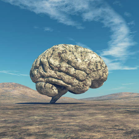 Conceptual image of a large stone in the shape of the human brain.  This is a 3d render illustration. Stock fotó