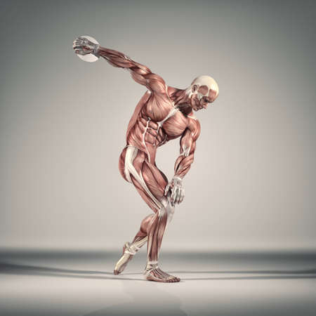 The sportman throwing disc. The  muscular system.  This is a 3d render illustration Фото со стока - 84193937