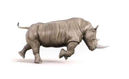 Rhino on white background. This is a 3d render illustration 스톡 콘텐츠