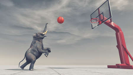 An elephant throws the ball at the basket. This is a 3d render illustration. Stok Fotoğraf