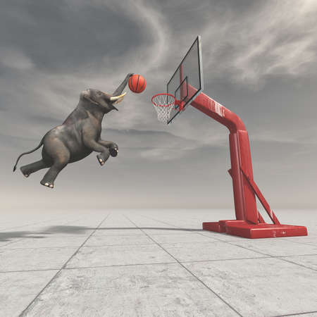 An elephant throws the ball at the basket. This is a 3d render illustration. 版權商用圖片