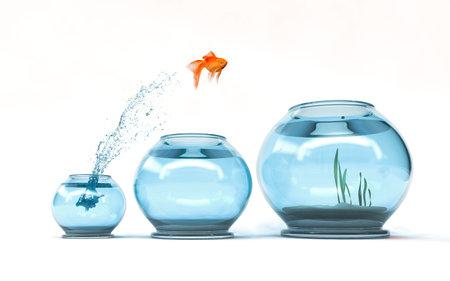 Springen zum höchsten Niveau - Goldfisch, der in eine größere Schüssel springt - Aspiration und Leistungskonzept. 3d übertragen illustartion Standard-Bild
