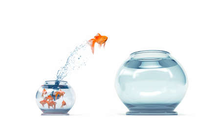 나는 더 큰 물고기 그릇에서 뛰어 내리는 금붕어가 다른 개념이 아닌 다른 사람들과 다르다. 3d 렌더링 일러스트 레이션