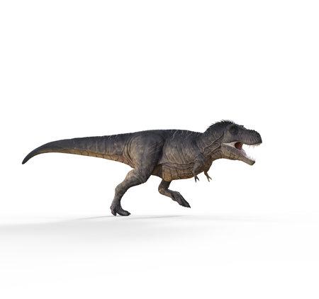 3d render dinosaur - trex white on white background. This is a 3d render illustration 版權商用圖片