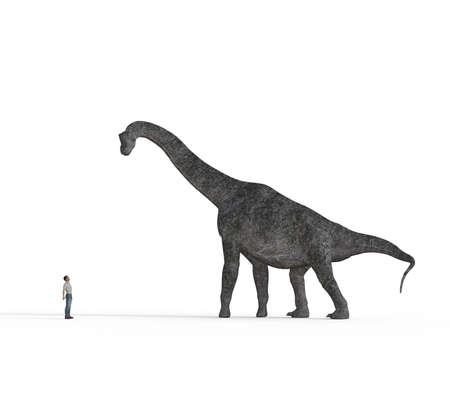 Small man face to face with big brachiosaurus dinosaurs on white background. This is a 3d render illustration Stock Photo