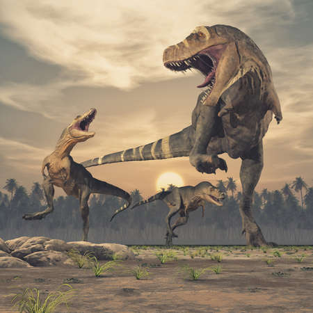 Three dinosaurs - tyrannosaurus rex. This is a 3d render illustration