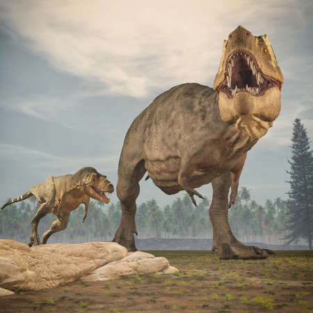 Two dinosaurs - tyrannosaurus rex. This is a 3d render illustration Foto de archivo - 102959988