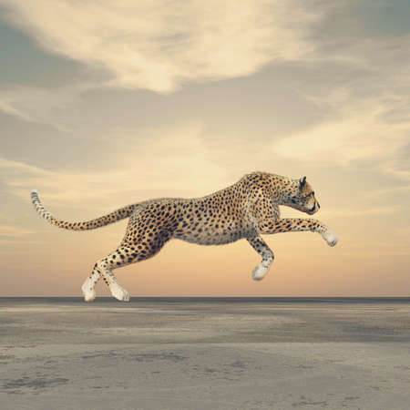 The beauty of a cheetah who running. This is a 3d render illustration