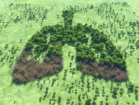 Imagen conceptual de un bosque en forma de pulmones con un tramo de bosque seco- Ilustración 3d