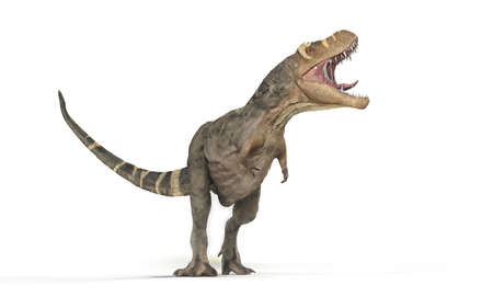 Tyrannosaurus Rex on white background - 3d illustration Stock fotó