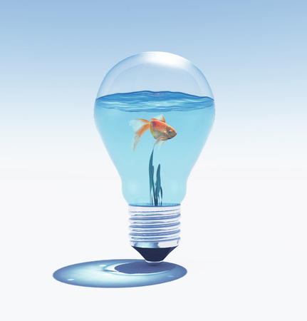 Side view of fish swimming against clear light bulb. 3d render illustration