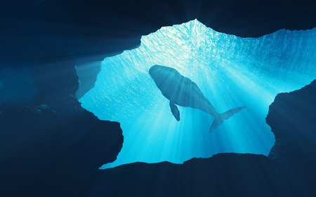 海の奥深くにあるクジラの水中シーン。これは 3D レンダリングのイラストレーションです。 写真素材