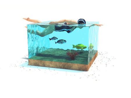 Conceptual image of a girl who swims in a cubic aquarium with a fish. This is a 3d render illustration