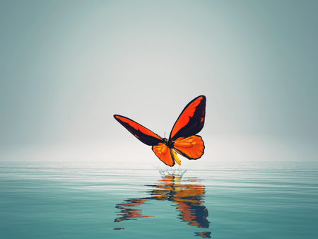 A red butterfly on sea. This is a 3d render illustration