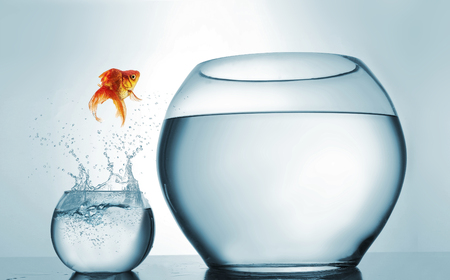Jumping to the highest level - goldfish jumping in a bigger bowl - aspiration and achievement concept. This is a 3d render illustration Standard-Bild - 118898939