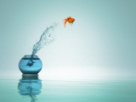 goudvissen springen uit de kom naar de zee. Stockfoto