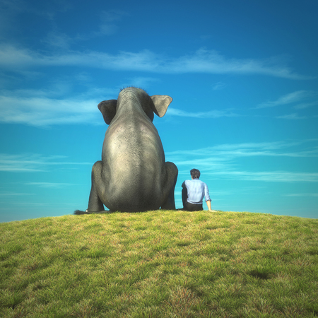 Man and an elephant together on a grass field admiring the view. This is a 3d illustration.