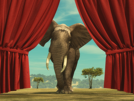 Opened red curtain shows an elephant entering the stage