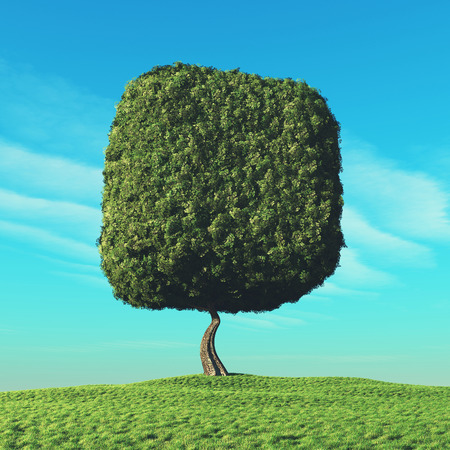 Cubical tree in the open field. This is a 3d render illustration Stockfoto