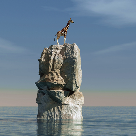 Giraffe stucked on a rock in the middle of the ocean This is a 3d render illustration