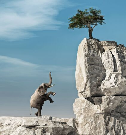 Elephant trying to climb a rock to a tree 写真素材