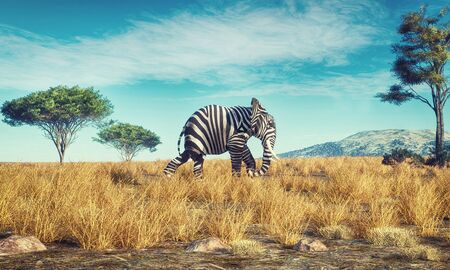 Elephant with a zebra skin walking in savannah . This is a 3d render illustration