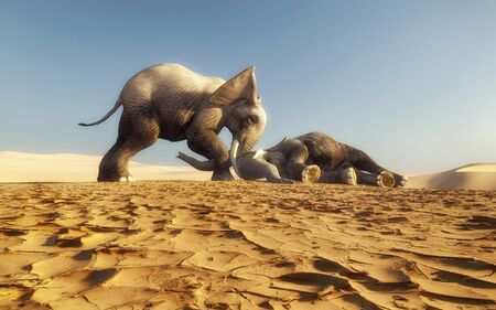 Elephant tries to wake up another elephant . Elephant on the ground . This is a 3d render illustration.