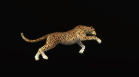Cheetah running isolated on black background . This is a 3d render illustration .