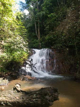 National park Phanom Bencha in Thailand photo