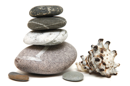 with shell stones beautifully laid out on a white background photo