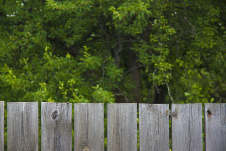planck: Beautiful background in the form of a wooden fence
