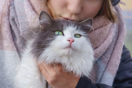 The cat sits in the arms of the girl and arrogantly looks