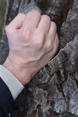 Male fist knocking on a tree that cracked
