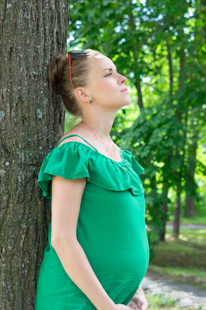 Pregnant girl stands near a tree in the park Banco de Imagens
