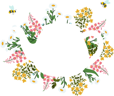 Herbs around the white teapot on a transparent background with flying bees