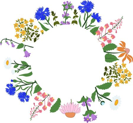 campanula: card with herbs in a circle Illustration